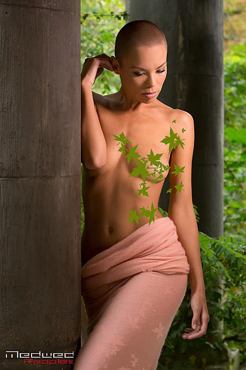 Model Dorka